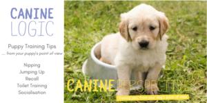 Free Puppy Training Tips Leaflet