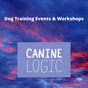121 Dog Training & Behaviour Herefordshire, Shropshire & Powys