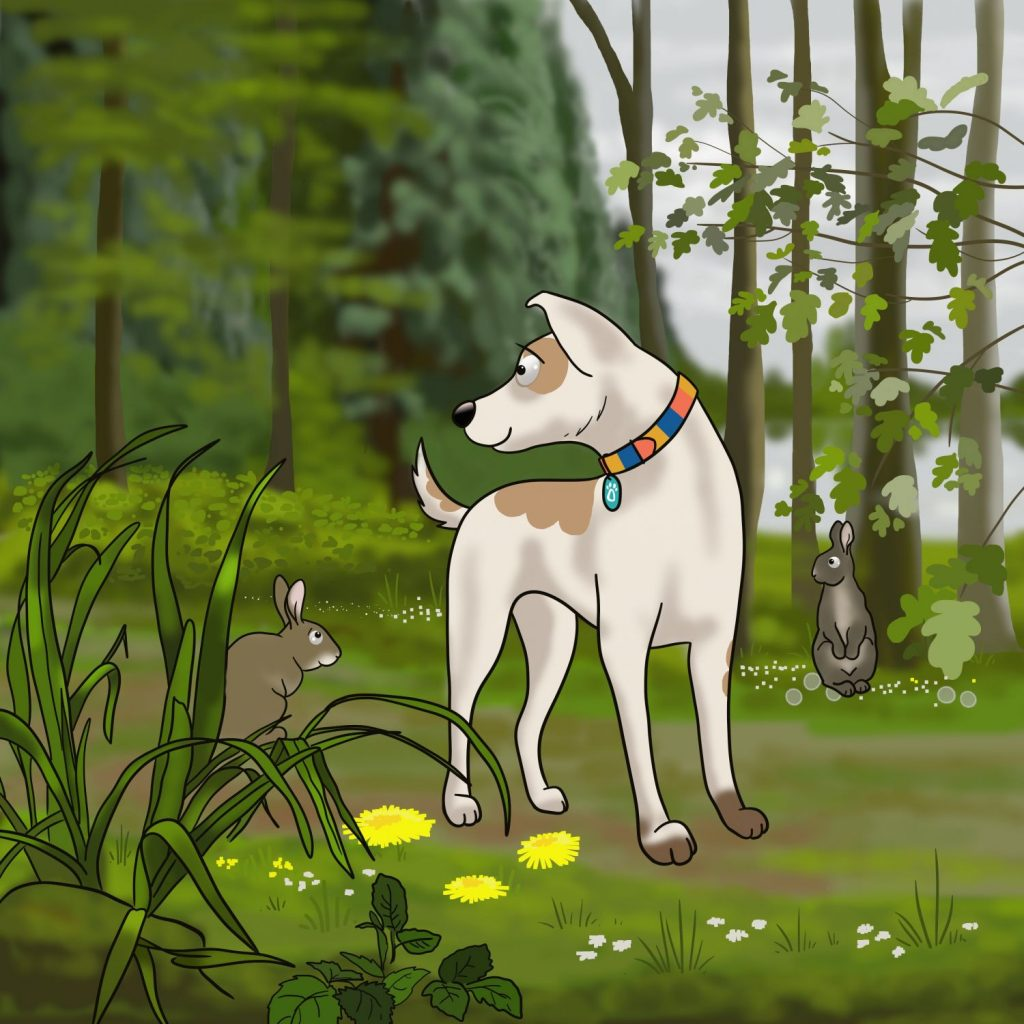 Canine Perspective CIC Team Luna